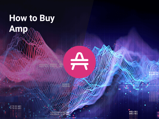 How to Buy Amp